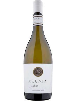 Clunia Albillo 2018