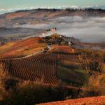 Costa di Bussia wijnen uit Piemonte
