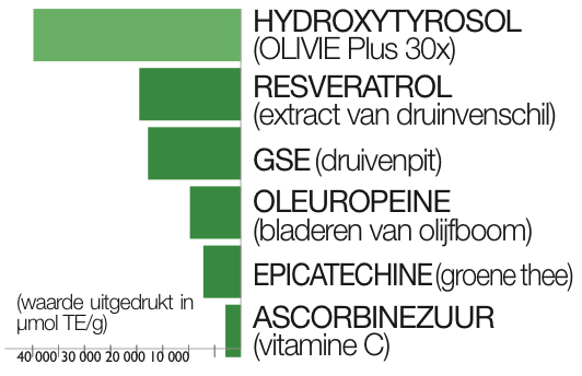 Olivie1NL (1)